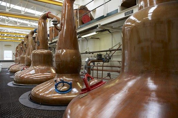 Glen Grant Whisky Distillery Stills